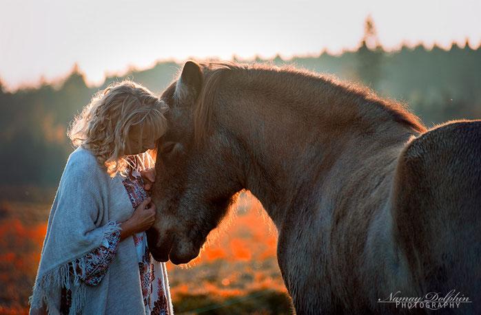 Pferdesprache, Vertrauen, Beziehung, Pferdeausbildung, Pferd trainieren