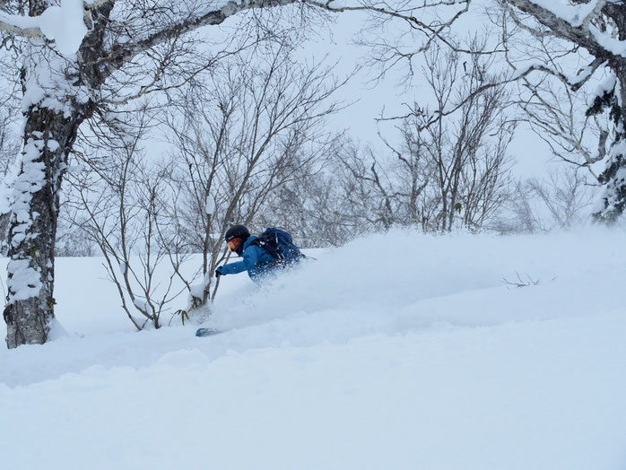 Photo by Masanori Kawamura