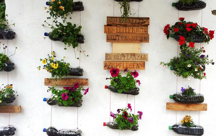 Urban Gardening; Guerilla Gardening; Altona; Chemnitzstraße; live4happiness2day; bloggingforinspiration; localloves; Blumenwand; Wandgarten; Wandflaschengarten; Flaschengarten