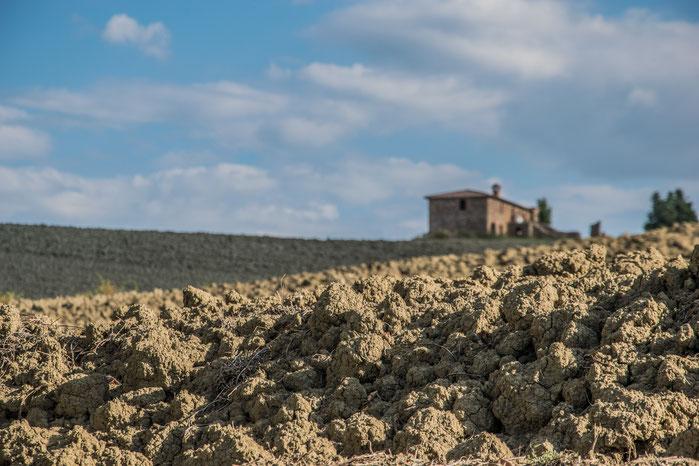 I campi arati nei pressi dell'Agriturismo Marinello a Pienza