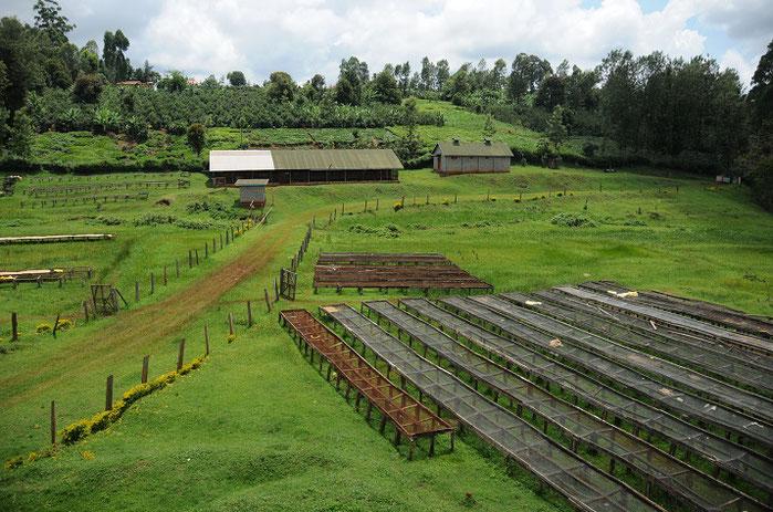 「アフリカンベッド」と呼ばれる乾燥棚。稼働していない状態の風景です。