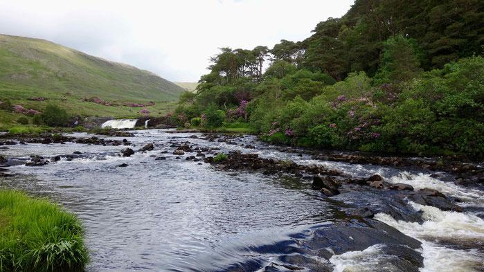 Aasleagh Falls bei Leenaun, County Mayo, Irland