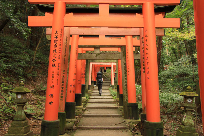 Kyoto - 7 Day Itinerary For Active Families with Small Kids - Hiking the Fushimi Inari Shrine in Kyoto with Small Kids