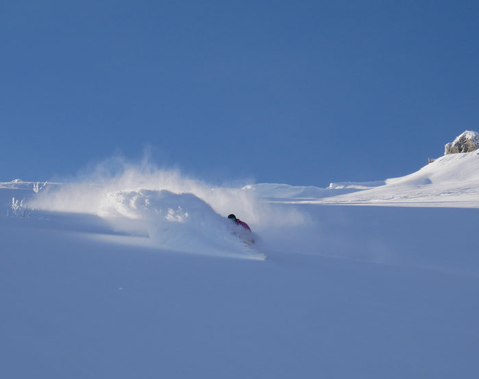 Freeride, Treeline, Champage-Powder