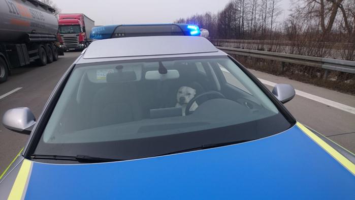 Foto: Polizeidirektion Sachsen-Anhalt Nord