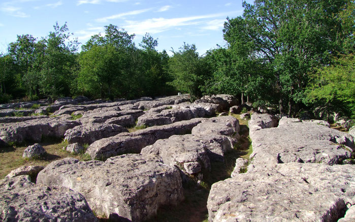 Labyrinthe Vert de Nébias - Randonnée Pyrénées Audoisess