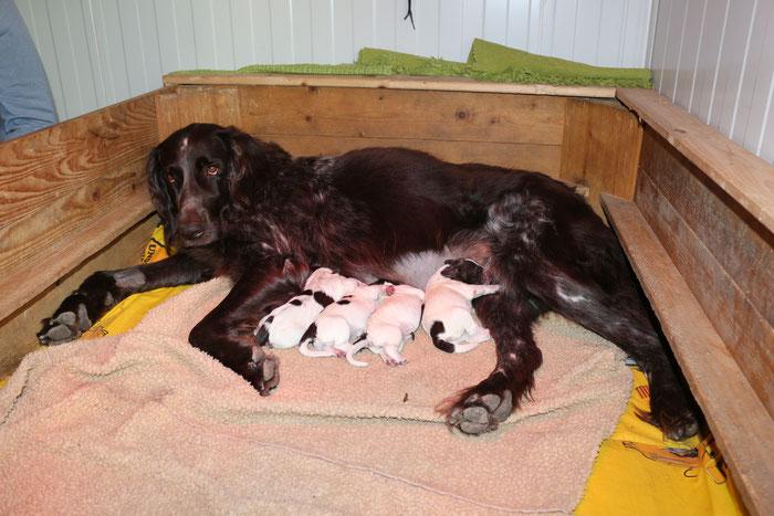 2. Tag nach der Geburt