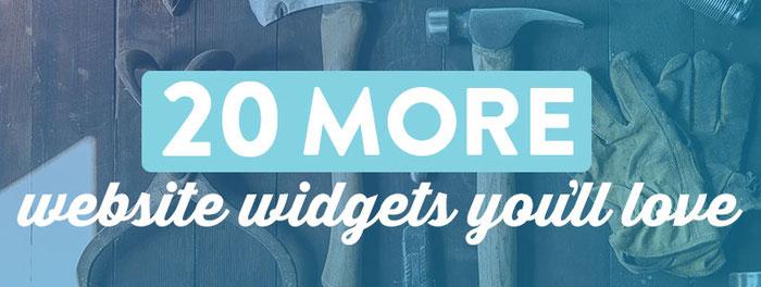 20 More Website Widgets We Love