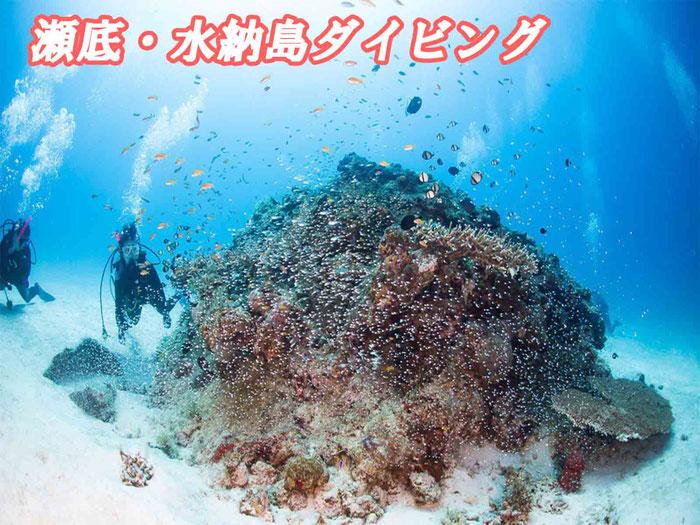 瀬底島/水納島ダイビング(3ダイブ)