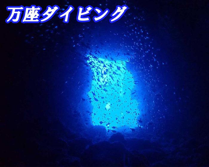 万座ダイビング(3ダイブ)