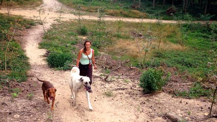 Naar het bos met de gedragstherapeut