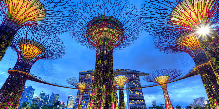 What to Know Before You Go to Singapore