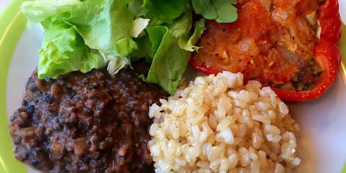 vegan stuffed pepper, lentils, rice and salad