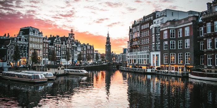 Vegan Food Guide to Amsterdam