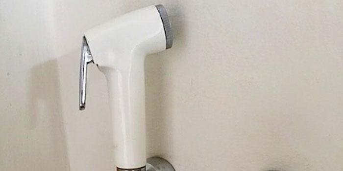 water hose SE Asia toilet