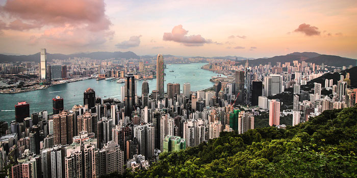 Wheeze to Eat the Best Meals in Hong Kong