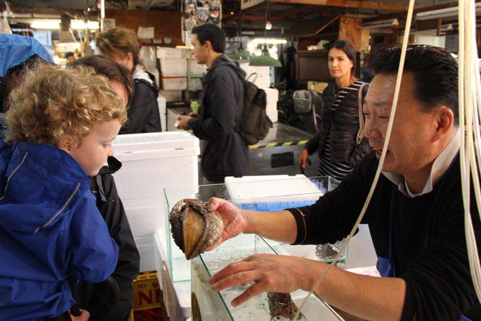 Tsukiji Fish Market Tokyo Japan Baby Toddler