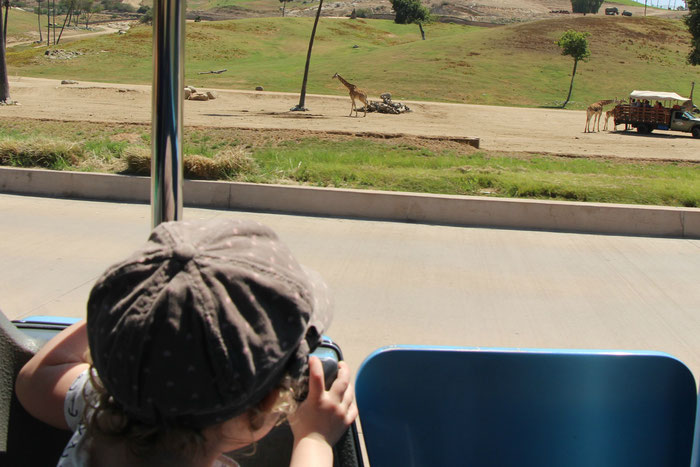 San Diego Safari Park - Travel With a Baby