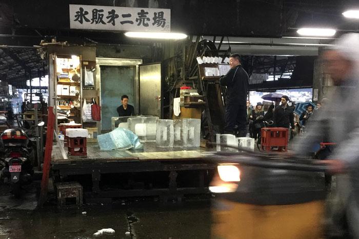 Tsukiji Fish Market Japan Tokyo Travel Baby Toddler