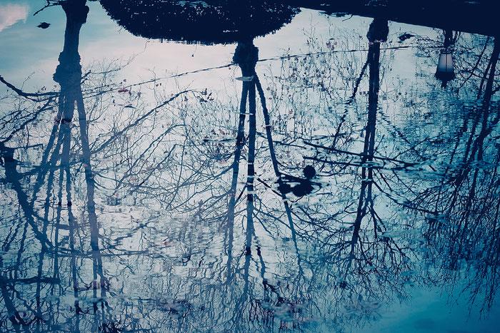 ©Colette Richard