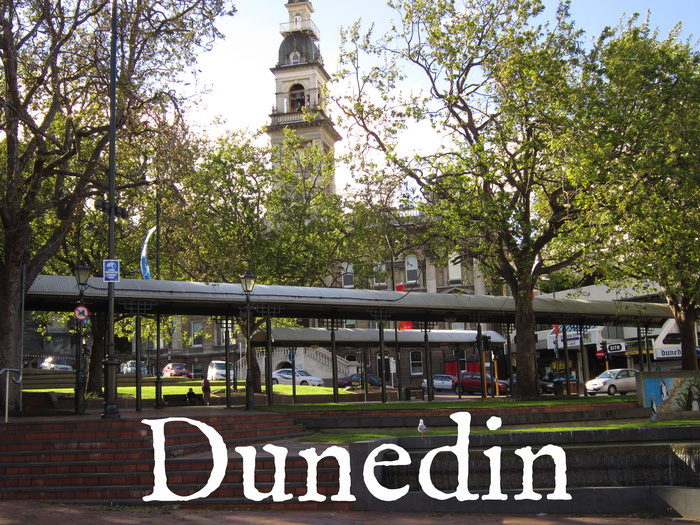 L'Octagon de Dunedin (centre-ville)
