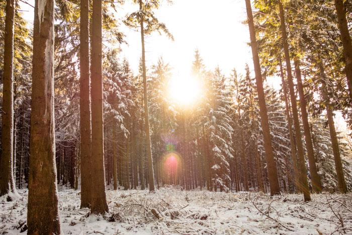 Der Winter bietet uns die einzigartige Notwendigkeit seine Komfortzone zu verlassen
