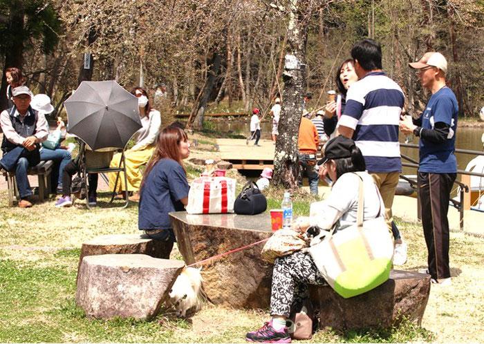 飛騨高山春のイベント美女高原みずばしょう祭り