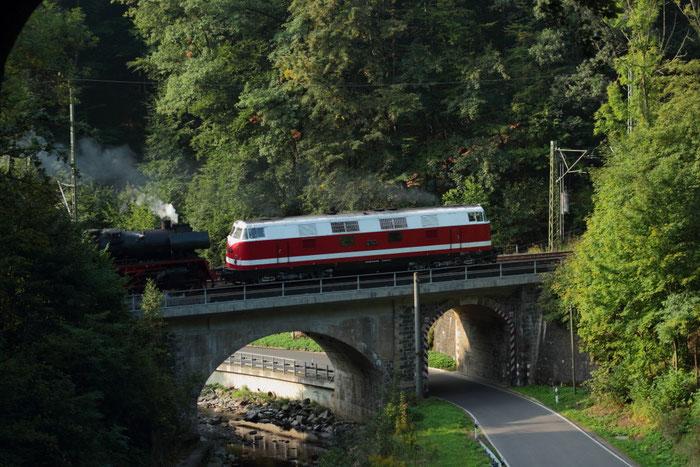 118 770 und 35 1019 mit Sdz von Cottbus nach Annaberg