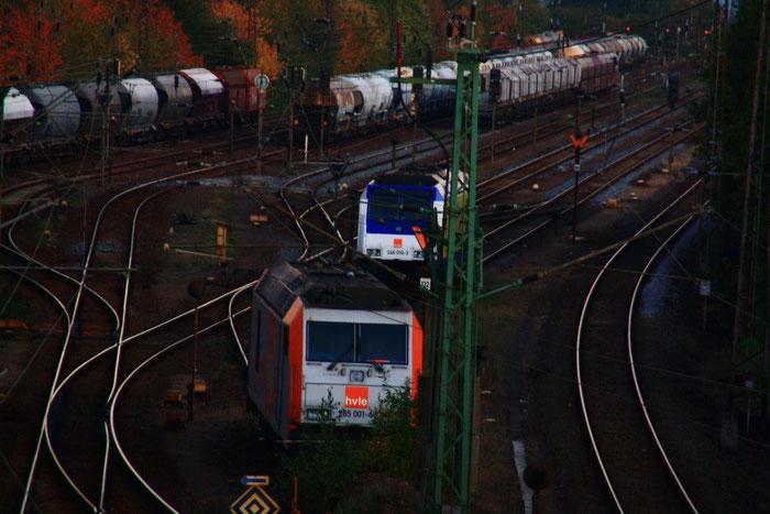 285 001 und 246 010 im Güterbahnhof Blankenburg