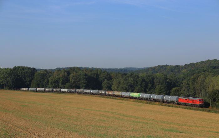 233 452 mit dem Kesselzug GC 62541 zw Nossen und Bodenbach