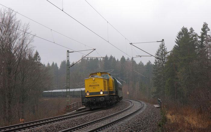 V100.01 als Zuglok eines Sonderzgues von Klingenberg-Colmnitz nach Dresden am kleinen Seerenteich