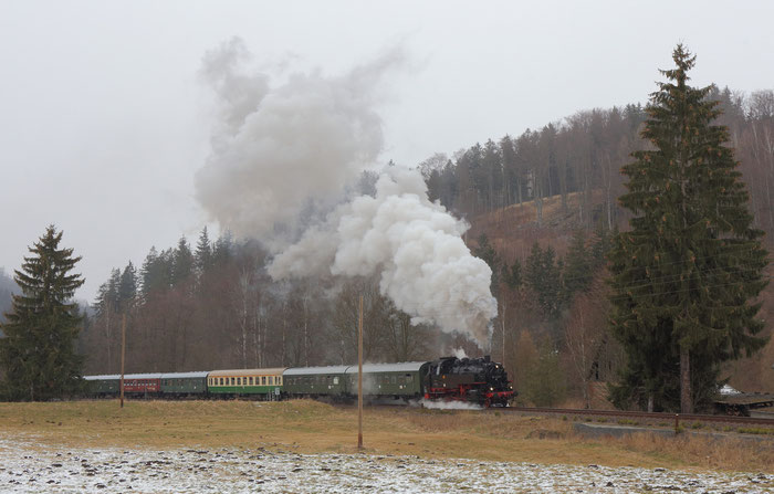 86 1333-3 mit dem Sonderzug des Lausitzer Dampflokclubs kurz vor Bärenstein