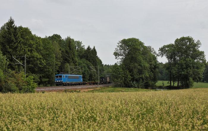 """""""Das blaue Wunder"""" oder die Press 155 045 mit einem umgeleiteten Güterzug bei Klingnberg"""