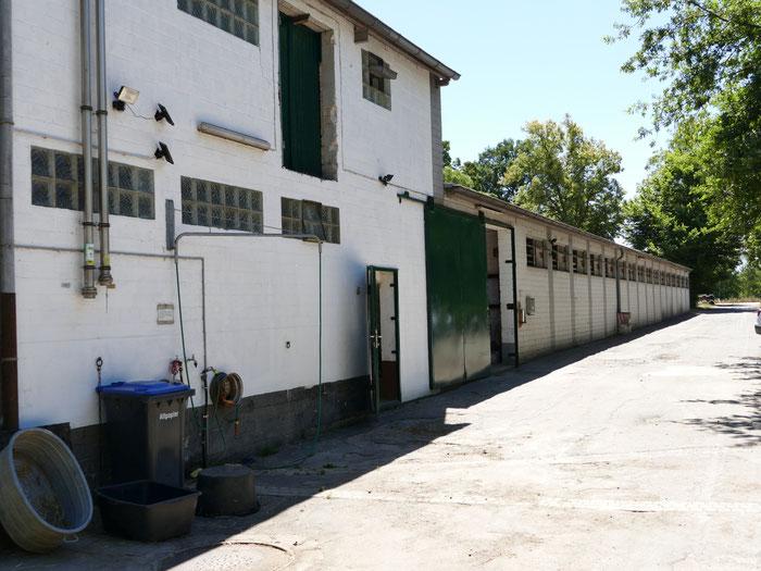 Haupteingang mit Blick auf die Einfahrt und den Privatpferdestall
