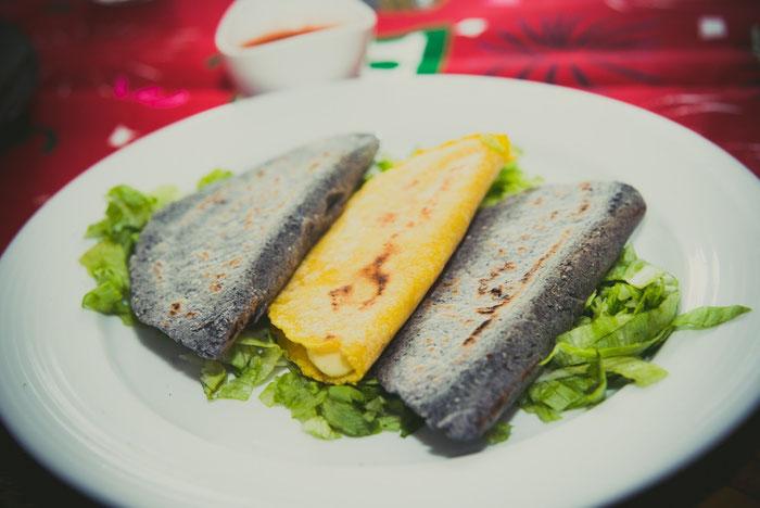 Die Quesadillas rechts und links außen wurden aus blauem Mais gemacht.