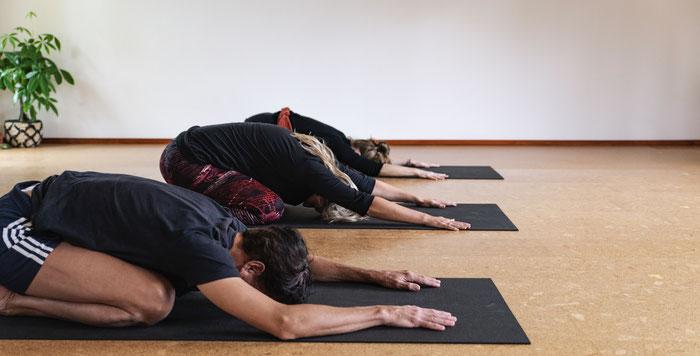 yoga in gouda strandyoga goudasfalt rederij de vrijheid