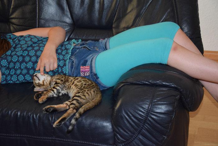 Bao, 11. Woche, macht Mittagsschlaf (Hitze!) bei unserer Tochter Enora (10 Jahre alt).