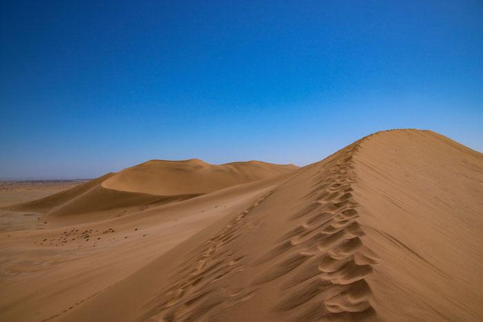 Düne 7 in der Namib-Wüste