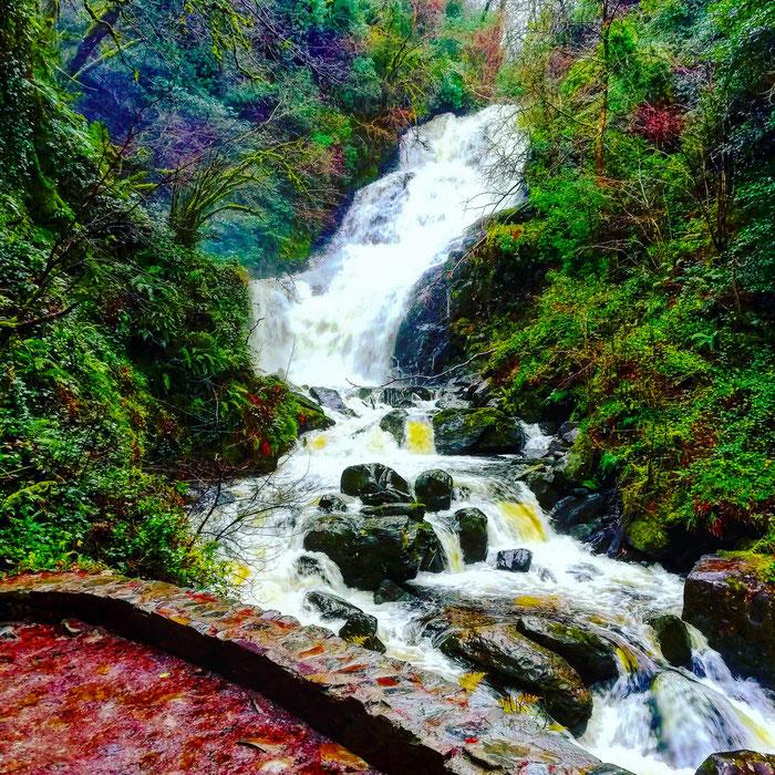 Torc Waterfall im Killarney Nationalpark