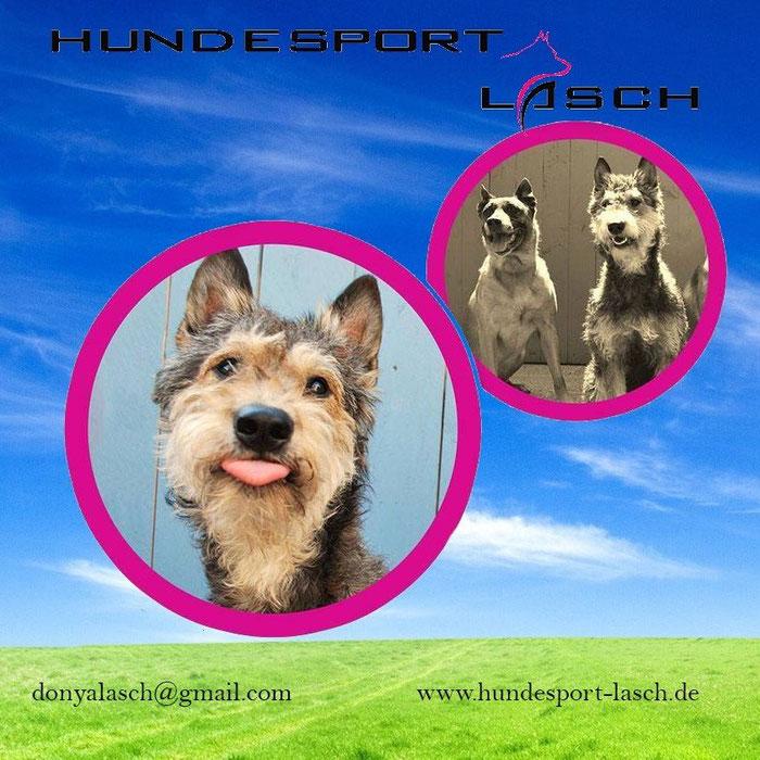 Hundesport Lasch - wir machen deinen Sport bunt !