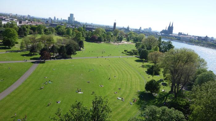 Il parco del Reno visto dalla funivia