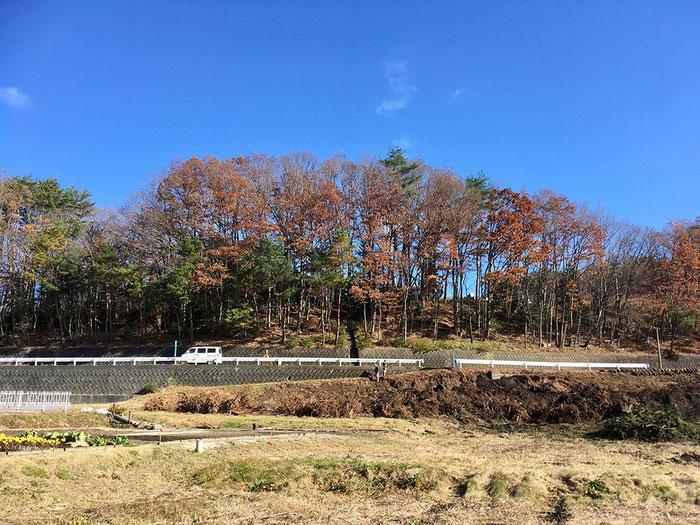 川内村住環境整備プロジェクト