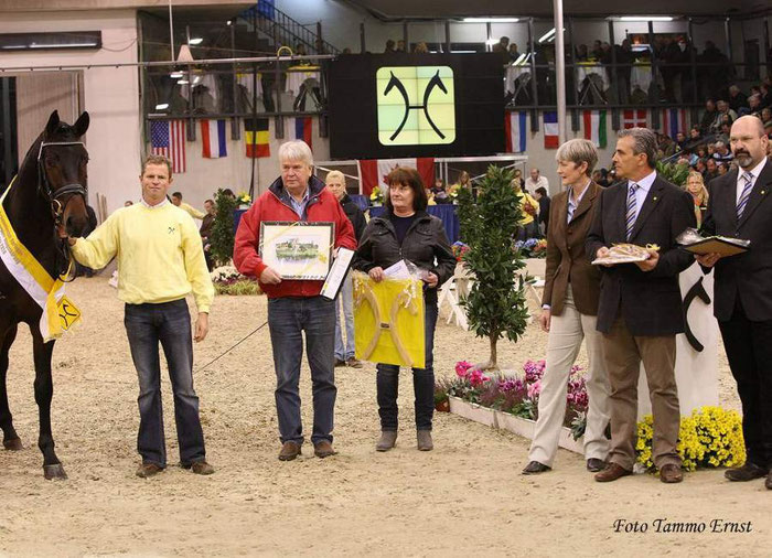 Stallion licensing in Verden, 2010: winner stallion of Stakkato-Calypso II-Abajo xx