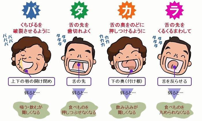 歯科 八戸 パタカラ 嚥下