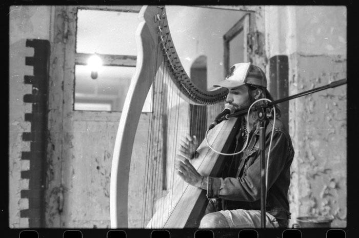 Andy Aquarius Rowan Farrell Grabowsee Live Celtic Harp