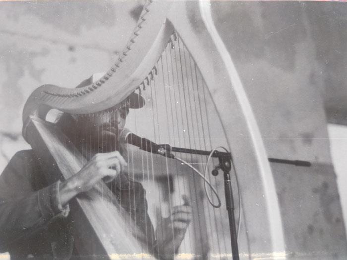 Andy Aquarius Ozbolt Celtic Harp Live