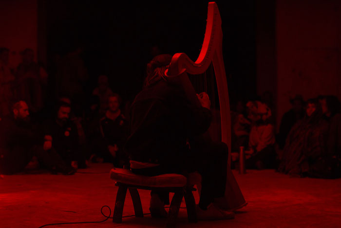 Andy Aquarius Celtic Harp Grabowsee Performance Photo by Mikolaj Rogowski