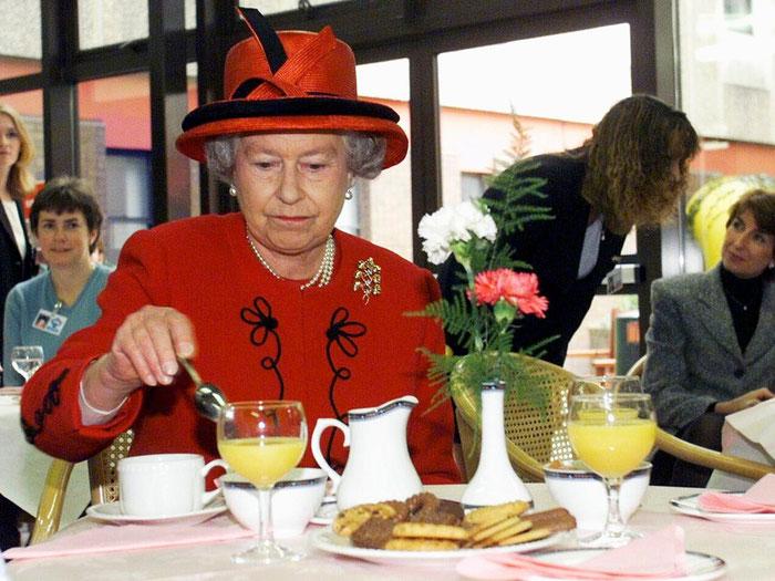 Апельсины для коз и английской королевы