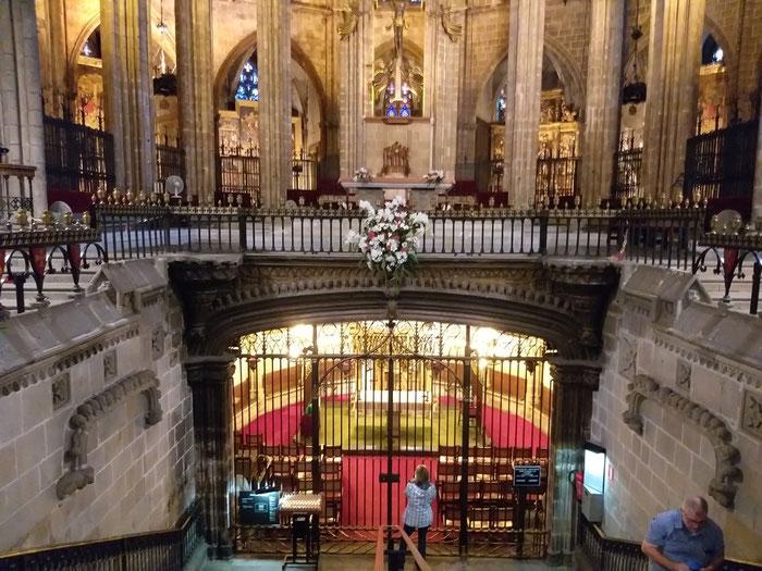 Гуси Кафедрального Собора Барселоны, Кафедральный Собор Барселоны