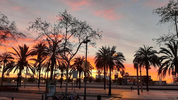 Барселона утром